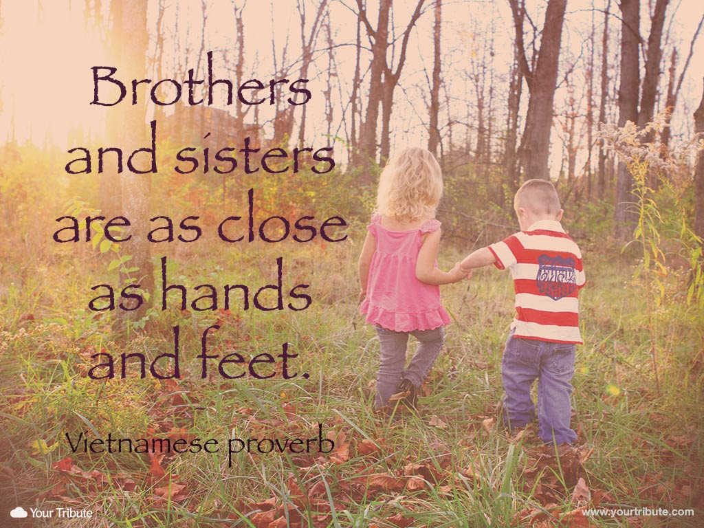 Quotes About Loss Of Sister 23 Quotes