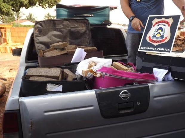 Drogas apreendidas em malas que circulavam nas rodovias federais (Foto: Divulgação/SSP-TO)