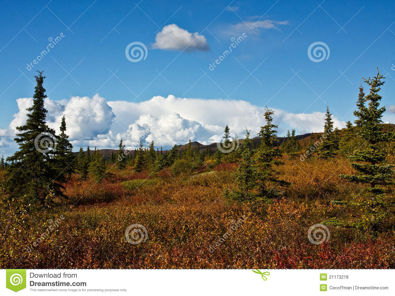 Alaska39;s Wilderness In Fall Royalty Free Stock Photos  Image