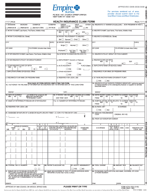 2003-2018 Form NY PHY 0738 Fill Online, Printable ...