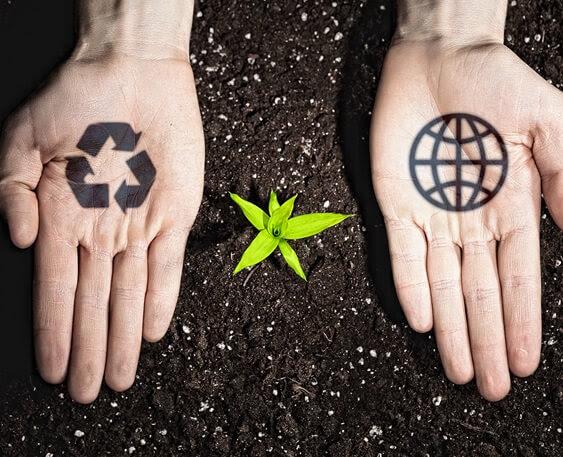 Conozca cómo se crea el biogás y las ventajas que trae | CJS Canecas