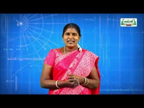 5th Maths Bridge Course அளவைகள் - எண்கள் நாள் 5&6 Kalvi TV