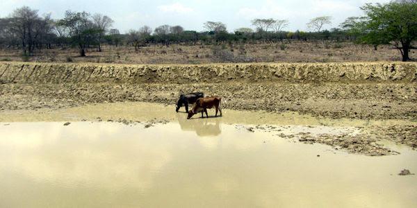 Pozos artesanales en Manatí (Atlántico) se han ido evaporando por la sequía.