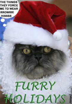 Furry Holidays