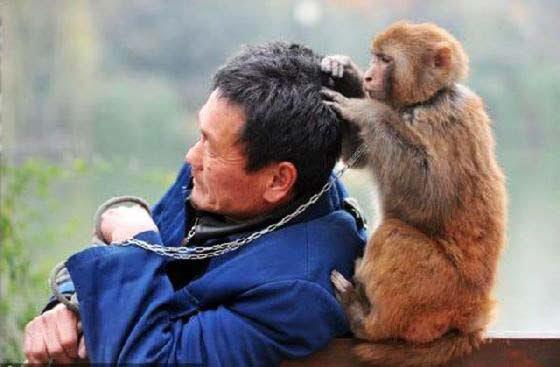 perierga.gr - Μερικά πολύ εξυπηρετικά ζώα...