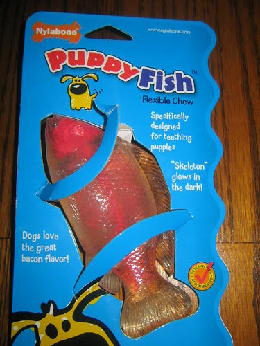 crazy fish Toy tanner LOVES