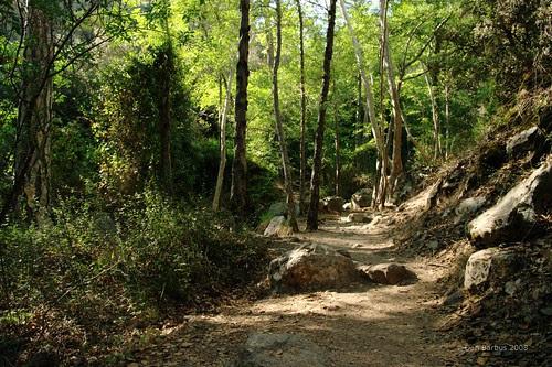 trail to Kaledonia