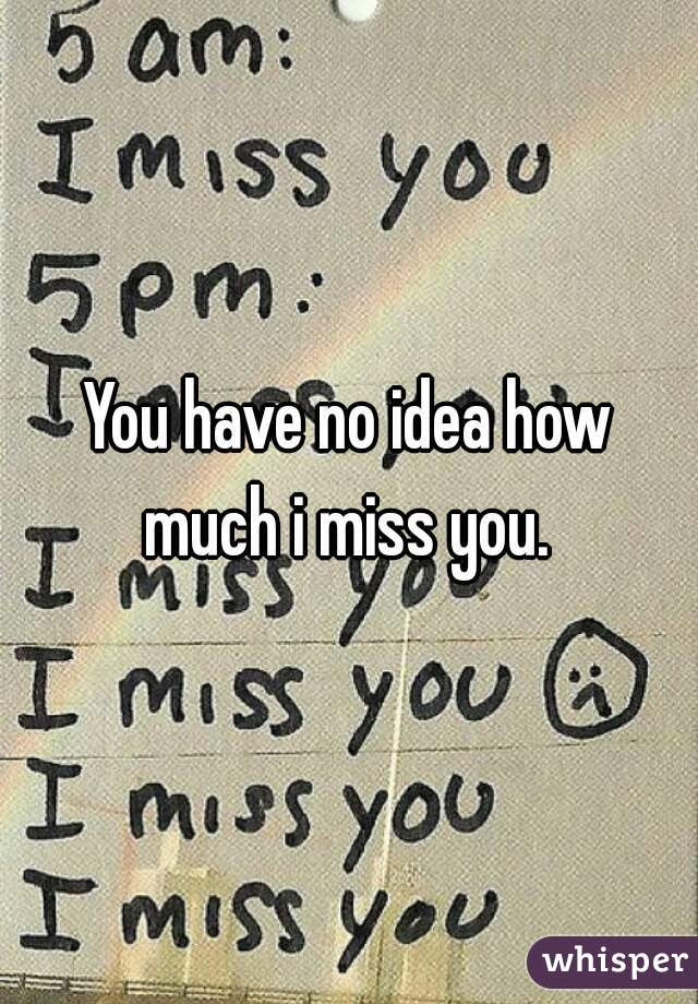 You Have No Idea How Much I Miss You