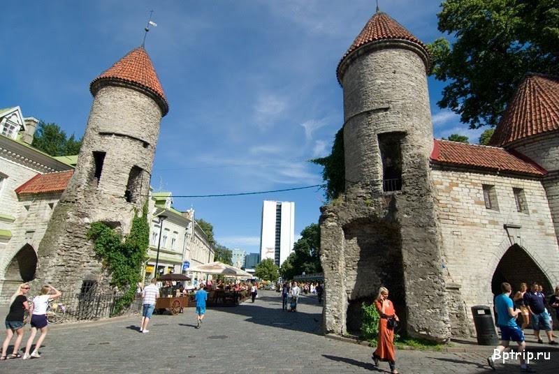 Картинки по запросу фото Таллин