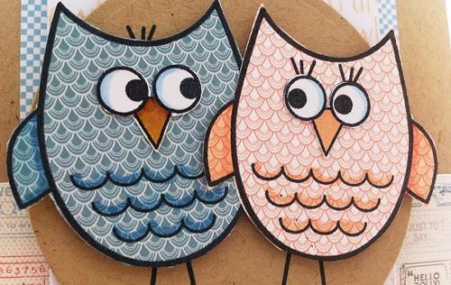 dysu owls
