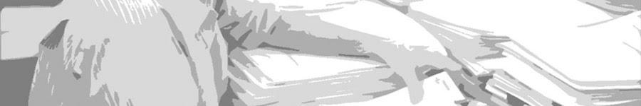 Resultado de imagen de comision andaluza calificadora de documentos