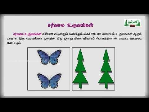 8th Maths வடிவியல்  அலகு 5 பகுதி 1 Kalvi TV