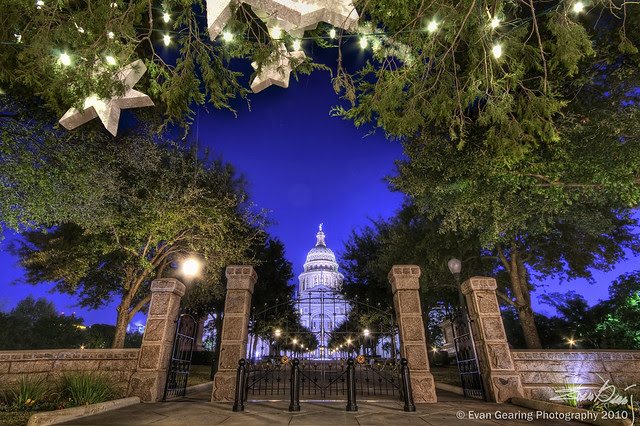 Texas Capitol From Under Christmas Tree