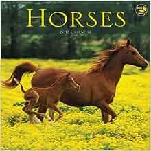 2012 Horses Mini Calendar Tf Publishing 9781617761393