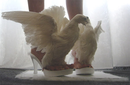 Bird Shoes