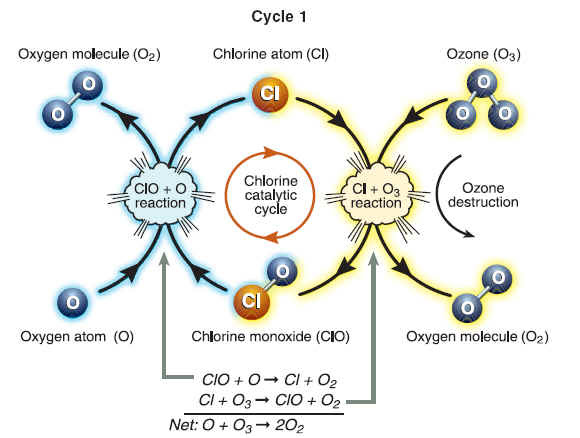 Ozone Cycle Diagram