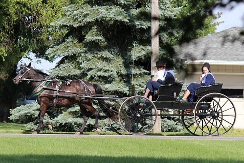 IMG_0166_Amish_Buggy