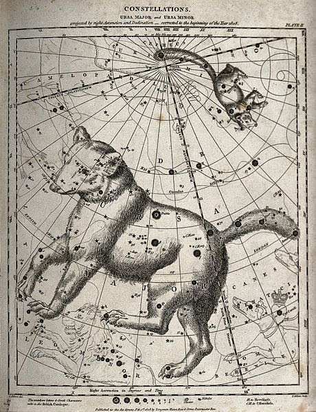 File:Astronomy; a chart of the constellations Great Bear and Litt Wellcome V0024713.jpg