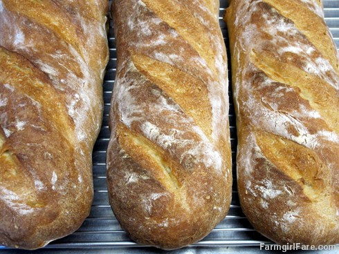 (19-6) Freshly baked French bread made with beer instead of water - FarmgirlFare.com