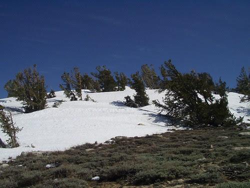 snow valley peak (9,200ft)