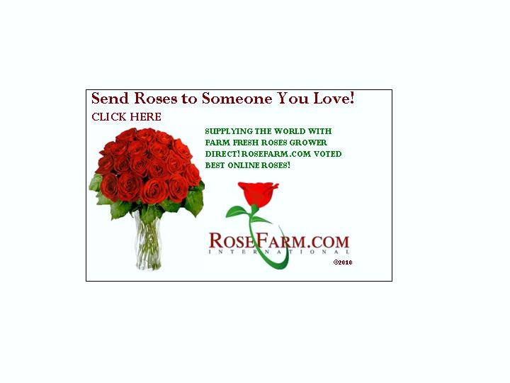 Inspirational Rose And Love Quotes Rosefarmcom International
