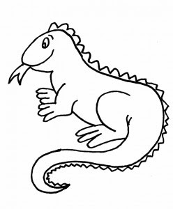 Iguana Para Colorear Dibujos Para Colorear