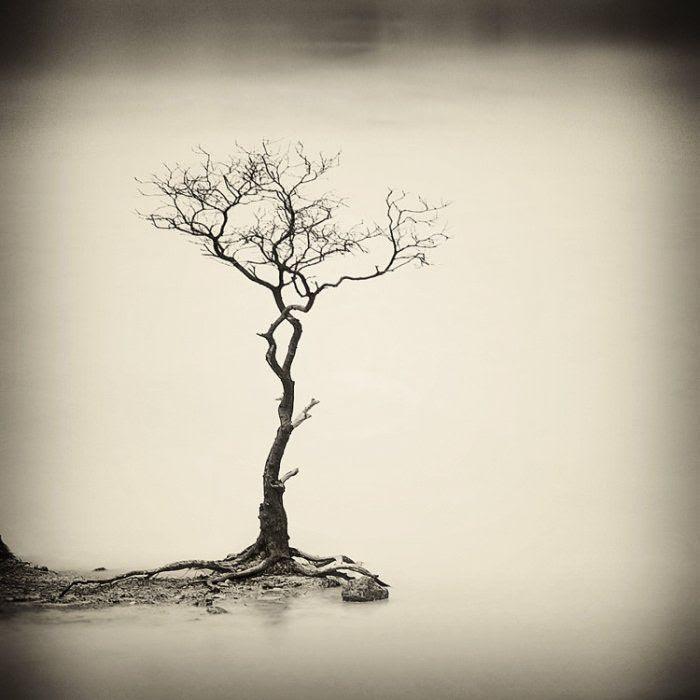 Hengki Koentjoro paisajes minimalistas 21