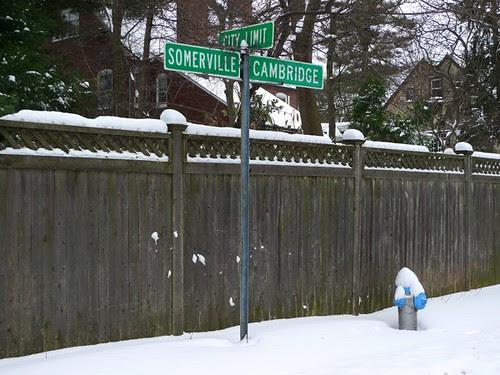 Winter in the Neighborhood