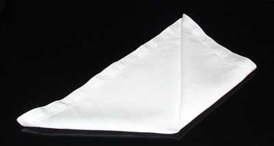 Napkin Fold #4