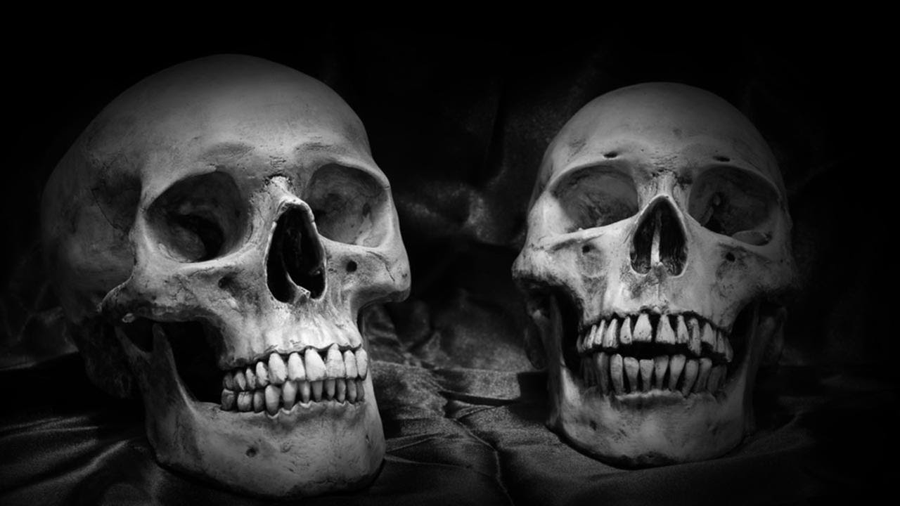 Image result for Mexican official: 250 skulls found in clandestine graves
