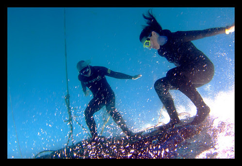 Freediving Fun: Platform Surfing