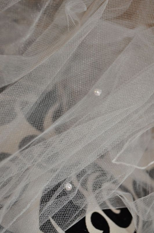 **Cathedral Veil w/pearls** :  wedding veil cathedral white dress DSC 0895