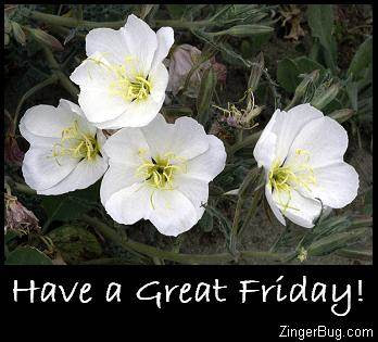 Great Friday Glitter Graphics Comments Gifs Memes And Greetings