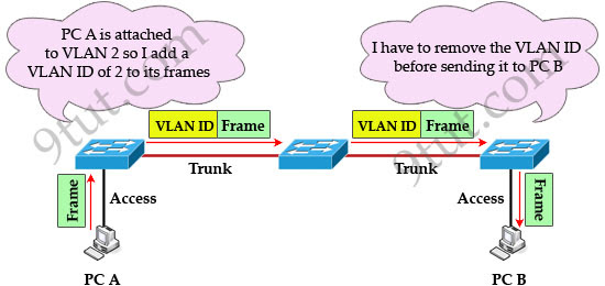 VLAN_tag_added_removed.jpg