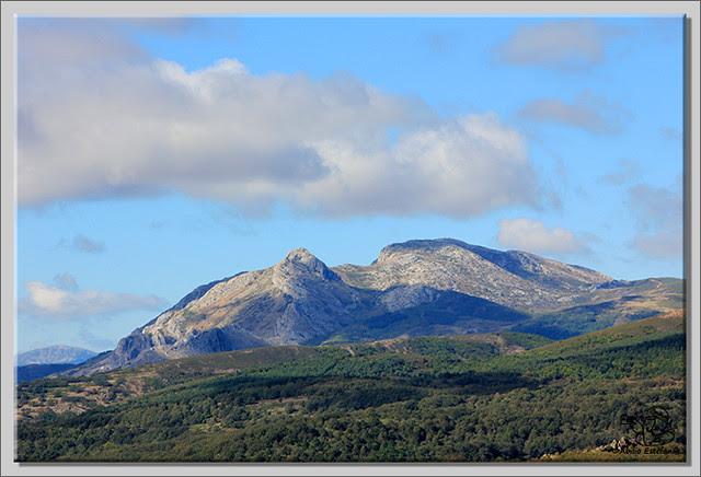 Roblón de Estalaya (Palencia) (24)