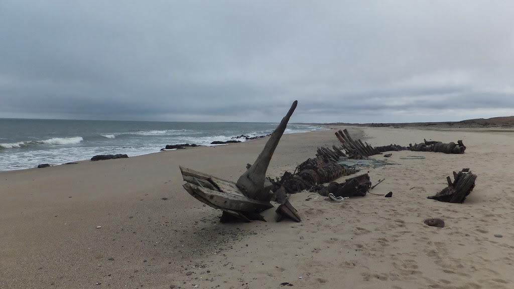 Skeleton Coast DSCF5719 Namibia