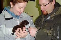 Mud and pups 2009