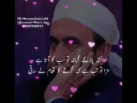 Beautiful quotes by maulana tariq jameel sahab