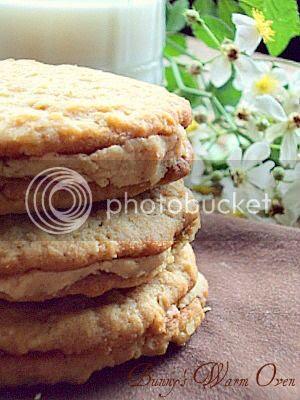 oatmeal peanut butter cookies photo DSC06953_zpsbb548795.jpg