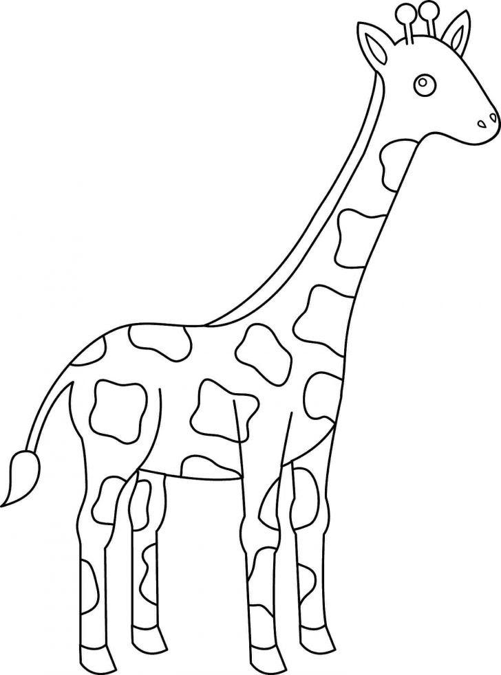 Simple Giraffe Drawing at GetDrawings | Free download
