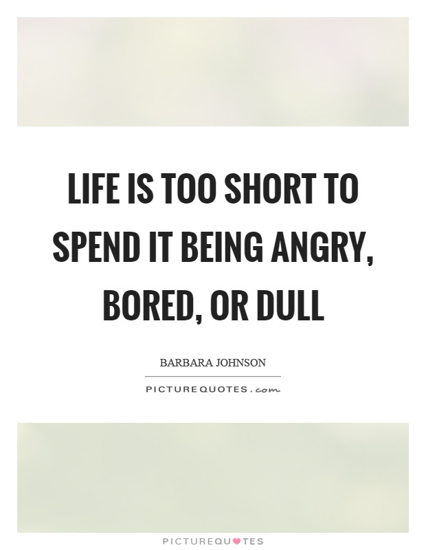 Life Is Too Short To Spend It Being Angry Bored Or Dull Picture