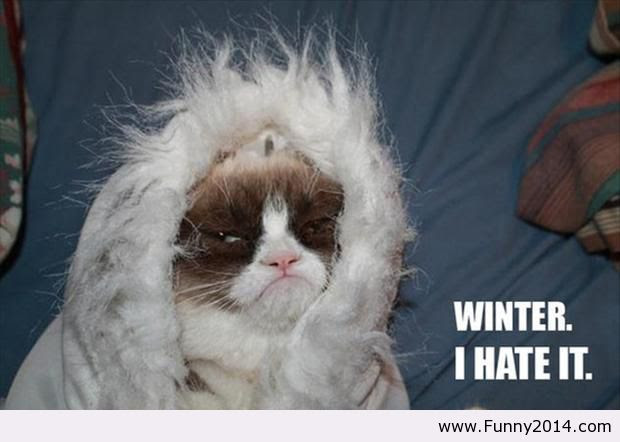 Winter Weather Funny Quotes On Quotestopics