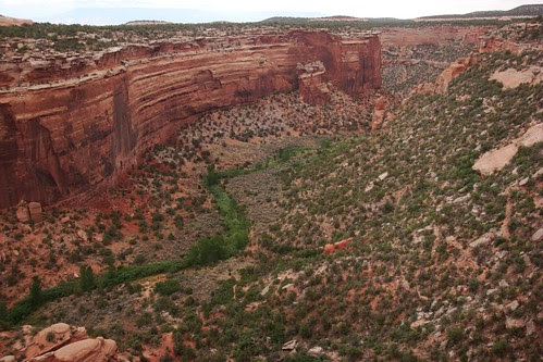 ZigZag creek in Canyon