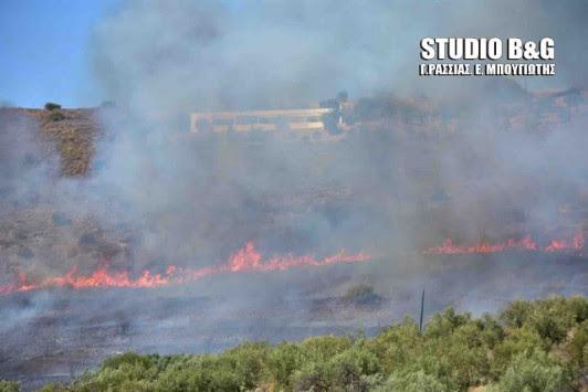 Μεγάλη φωτιά είναι σε εξέλιξη στο Ναύπλιο - Τραυματίστηκε φωτορεπόρτερ [pic,vid]