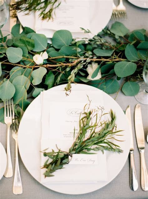 Best 25  Eucalyptus leaves ideas on Pinterest   Eucalyptus
