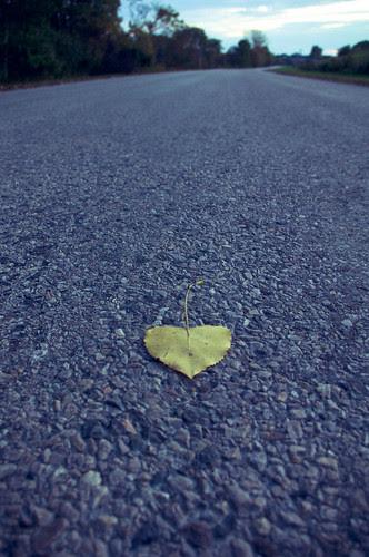 Heart by appareil