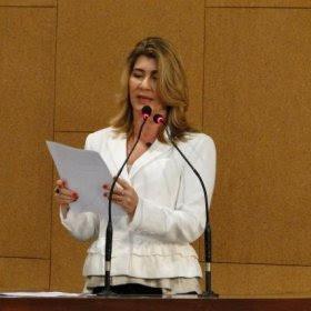 Graça Pimenta faz alerta sobre risco de epidemia de dengue na Bahia
