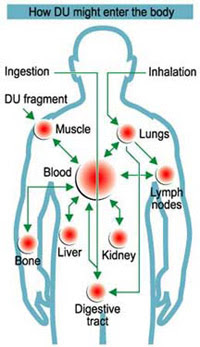 How-DU-enters-body