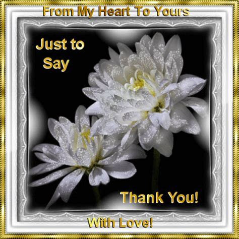 Just To Say Thank You! Free Thank You eCards, Greeting