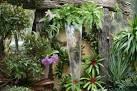 4 Tropical Home Garden Ideas You Can Learn | Annies Garden